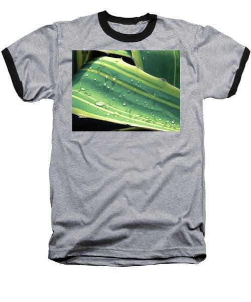 Toboggan Baseball T-Shirt by Beto Machado