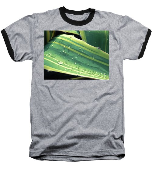 Toboggan Baseball T-Shirt