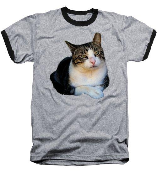 Tom Cat Baseball T-Shirt by Pamela Walton