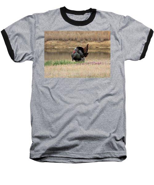 Tom Turkey At Pond Baseball T-Shirt