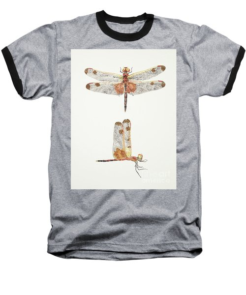 Top And Side Views Of A Male Calico Pennant Dragonfly Baseball T-Shirt
