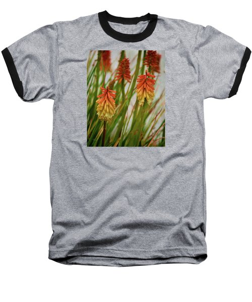 Torch Lily At The Beach Baseball T-Shirt by Sandi OReilly