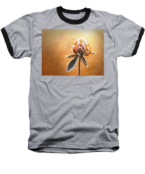 Torcia Baseball T-Shirt by Greg Collins