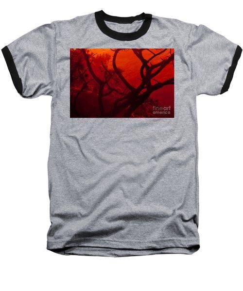 Torrey Pines Glow Baseball T-Shirt