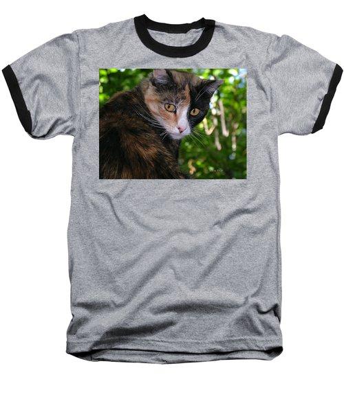Tortie Baseball T-Shirt
