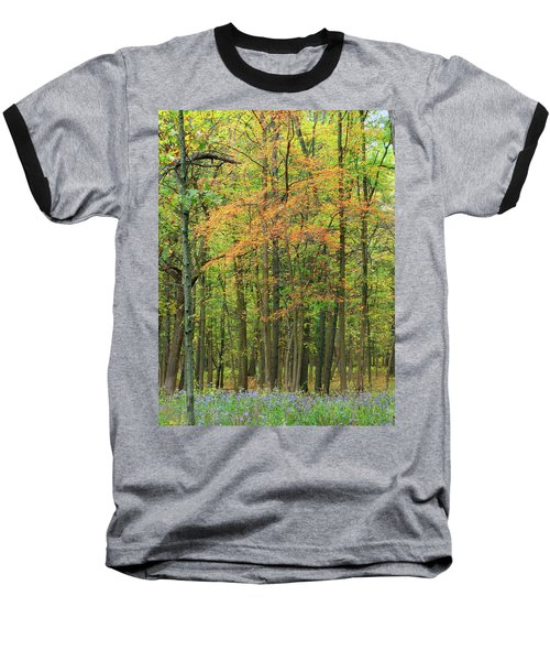 Touch Of Autumn Baseball T-Shirt by Cedric Hampton