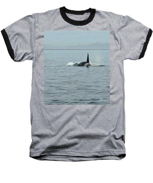 Transient Killer Whale Baseball T-Shirt