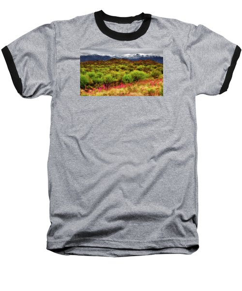 Transition Baseball T-Shirt by Rick Furmanek