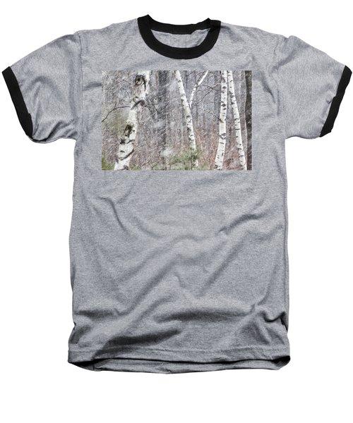Transition, Spring Squall 3 - Baseball T-Shirt