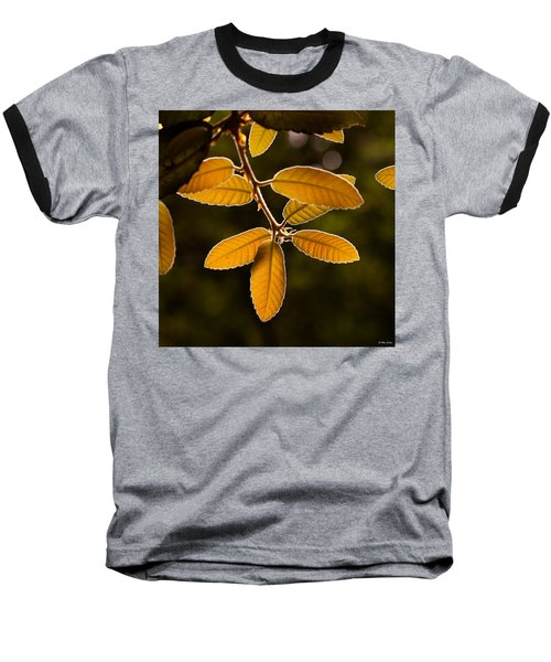 Translucent Leaves Baseball T-Shirt