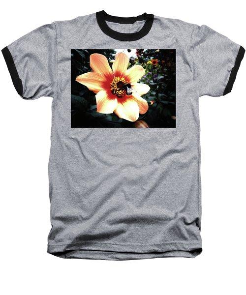 Translucent Wings Baseball T-Shirt