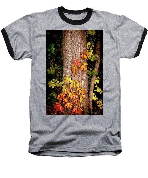 Tree Adornment Baseball T-Shirt