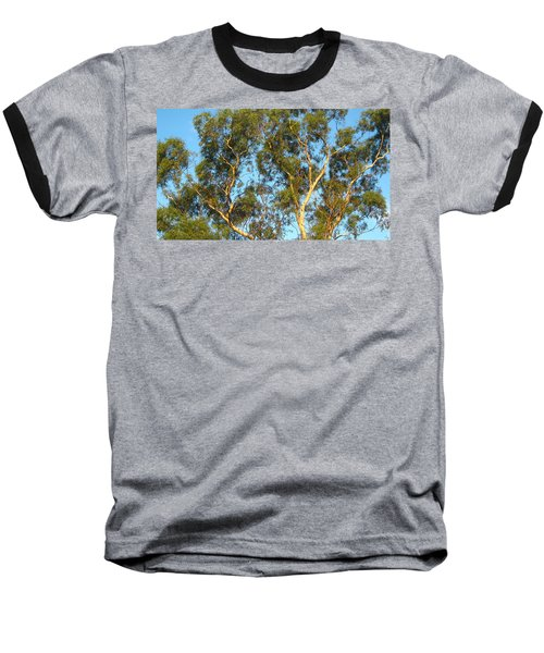 Tree And Sky Baseball T-Shirt