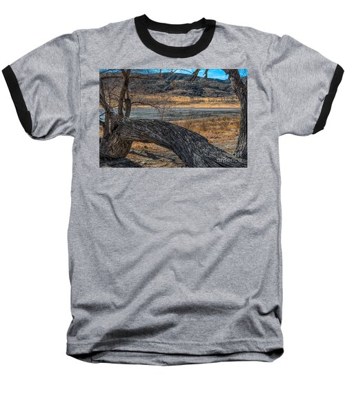 Tree At Elizabeth Lake Baseball T-Shirt