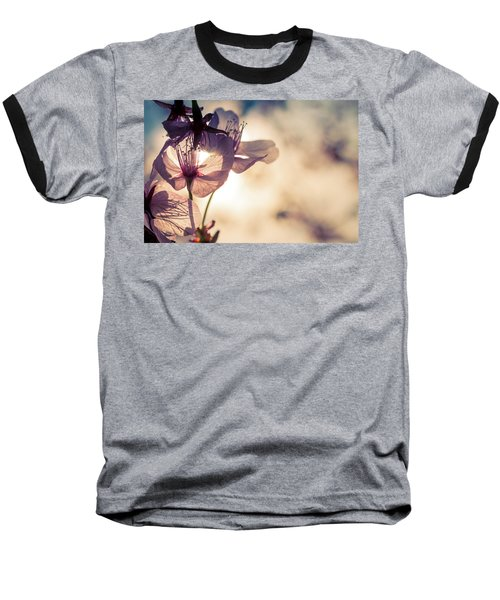 Tree Blossoms Backlit By The Afternoon Sun Baseball T-Shirt