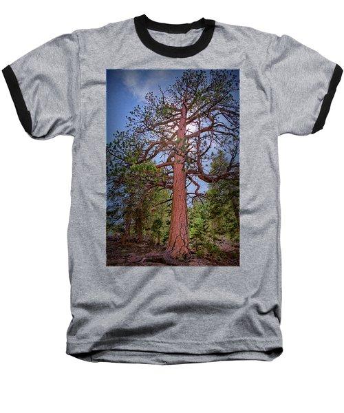 Tree Cali Baseball T-Shirt