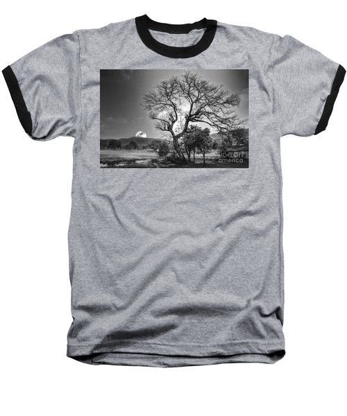 Tree Baseball T-Shirt by Charuhas Images