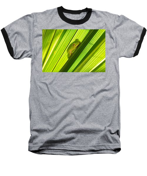 Tree Frog And Palm Frond Baseball T-Shirt by Kenneth Albin