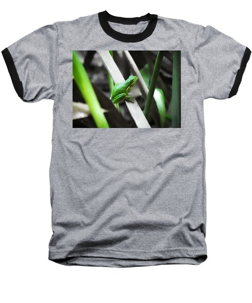 Tree Frog Baseball T-Shirt