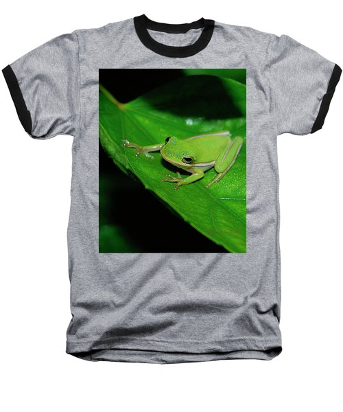 Tree Frog On Hibiscus Leaf Baseball T-Shirt