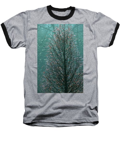 Tree In Autumn, With Red Leaves, Blue Background, Sunny Day Baseball T-Shirt by Emanuel Tanjala