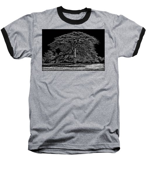Tree In England Baseball T-Shirt