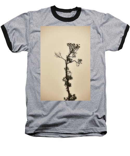 Tree In The Mist Baseball T-Shirt
