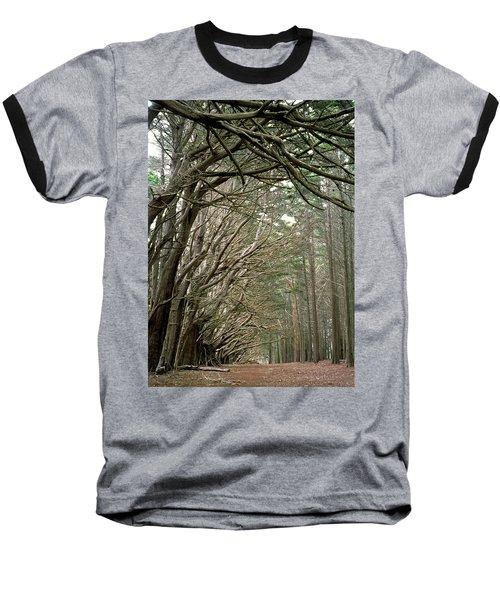 Tree Lane Baseball T-Shirt by Art Shimamura