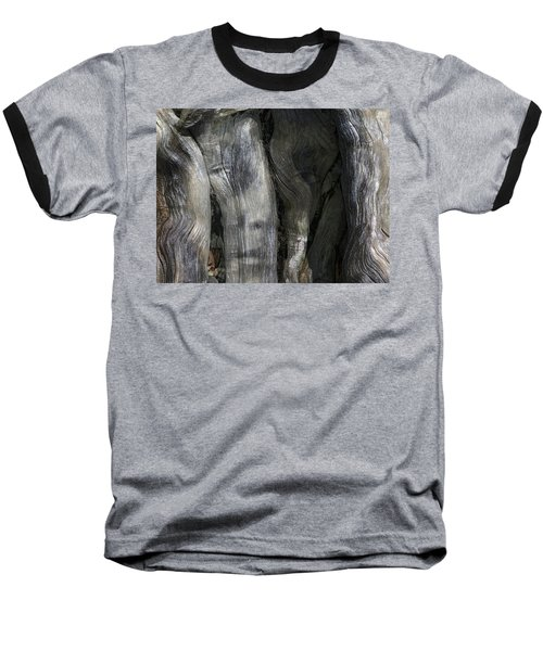 Baseball T-Shirt featuring the photograph Tree Memories # 20 by Ed Hall