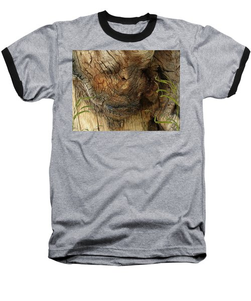Baseball T-Shirt featuring the photograph Tree Memories # 22 by Ed Hall