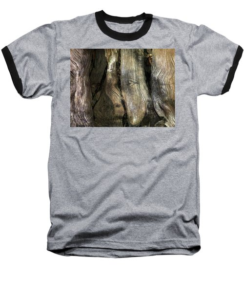 Baseball T-Shirt featuring the photograph Tree Memories # 24 by Ed Hall
