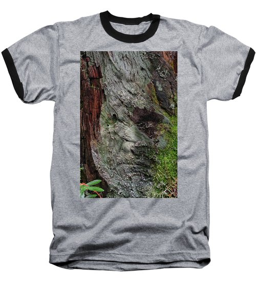 Baseball T-Shirt featuring the photograph Tree Memories # 38 by Ed Hall