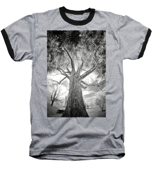 Tree Monster Bw Ap Baseball T-Shirt