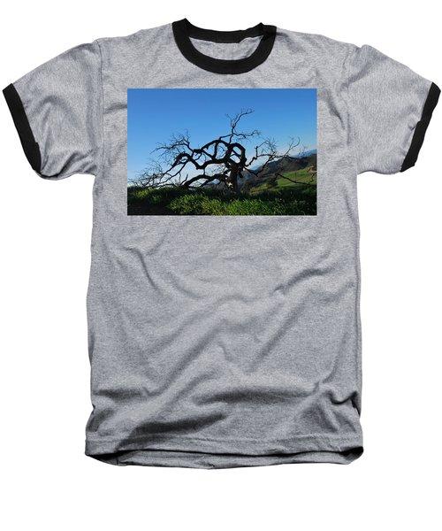 Baseball T-Shirt featuring the photograph Tree Of Light - Slanted Horizon by Matt Harang