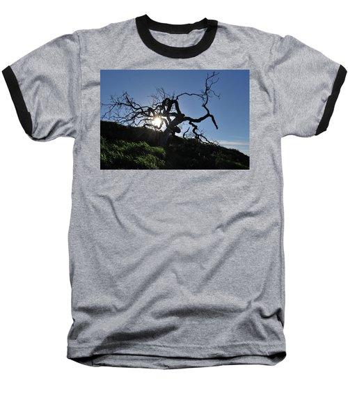 Baseball T-Shirt featuring the photograph Tree Of Light - Sunshine Through Branches by Matt Harang
