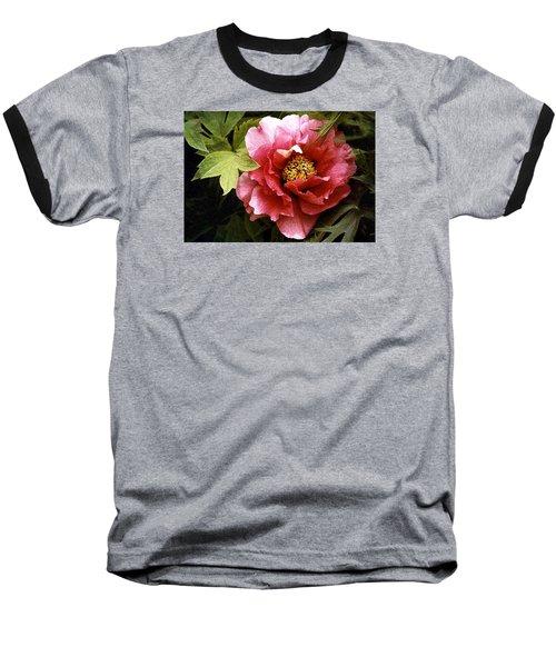 Tree Peony Baseball T-Shirt by Janis Nussbaum Senungetuk