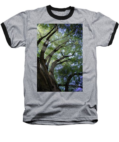 Baseball T-Shirt featuring the photograph Tree Rays by Brian Jones