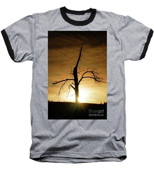 Tree Silhouette At Sundown Baseball T-Shirt
