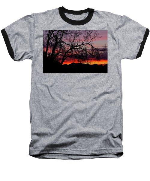 Tree Silhouette Baseball T-Shirt by Paul Marto