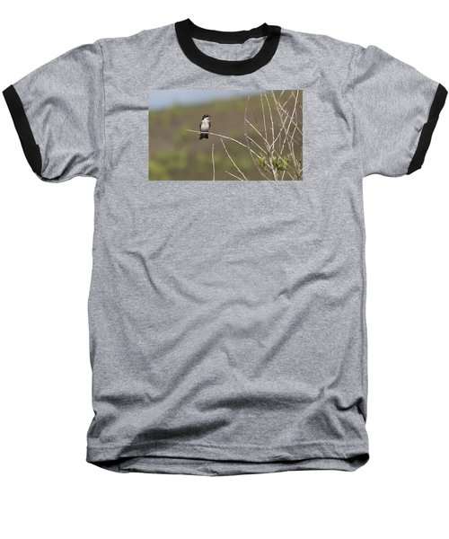 Tree Swallow Baseball T-Shirt