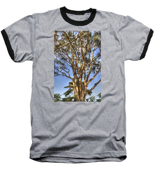 Tree To The Heavens Baseball T-Shirt