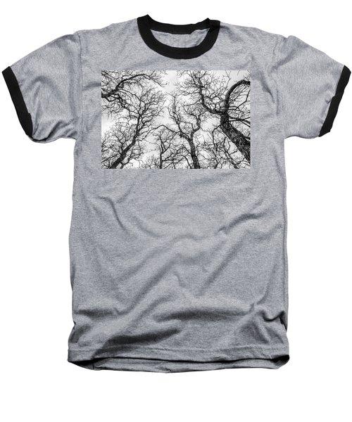 Tree Tops Baseball T-Shirt
