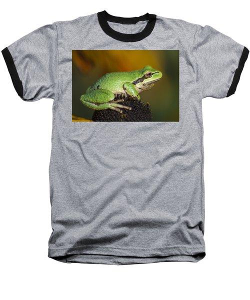 Treefrog On Rudbeckia Baseball T-Shirt