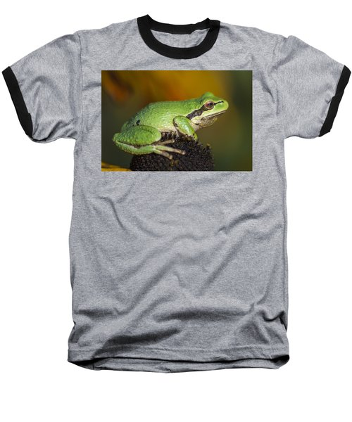 Treefrog On Rudbeckia Baseball T-Shirt