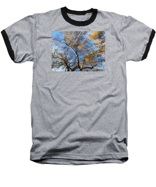 Trees Grow To The Sky Baseball T-Shirt by Odon Czintos