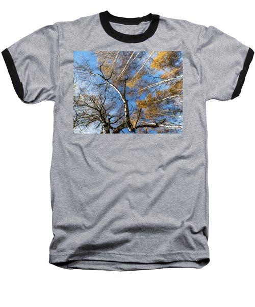 Trees Grow To The Sky Baseball T-Shirt
