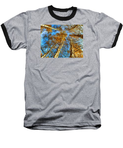 Trees Grow To The Sky Paint Baseball T-Shirt by Odon Czintos