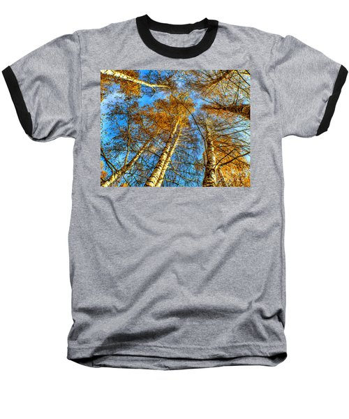 Trees Grow To The Sky Paint Baseball T-Shirt