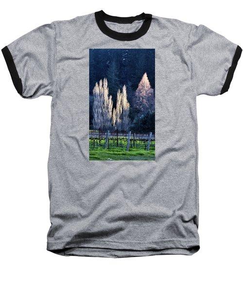 Trees In Fall Napa Valley Baseball T-Shirt by Josephine Buschman