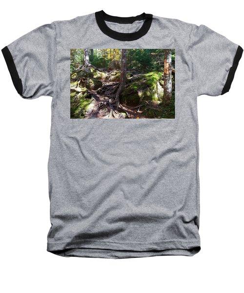 Trees - Mont Tremblant National Park Baseball T-Shirt
